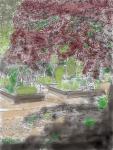 Garden Watercolor Small